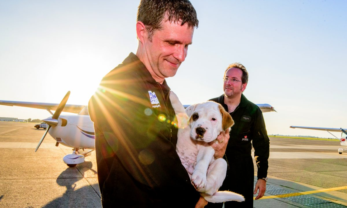 Favor For a Friend Launches Airborne Animal Rescue Team
