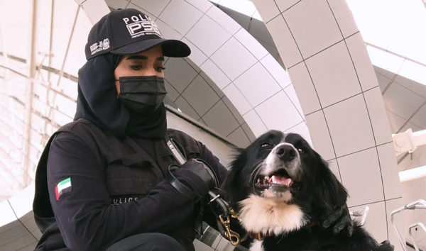 COVID-Sniffing Dogs Could Help Make Air Travel Safer
