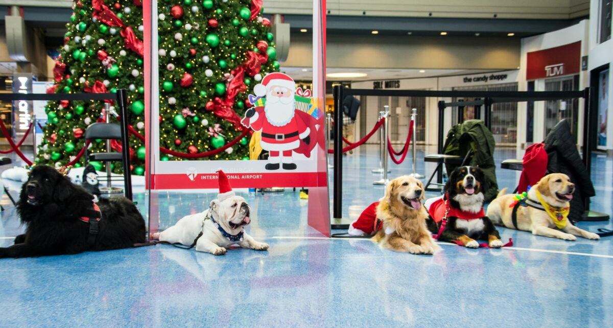 VIDEO: PIT PAWS Team Returns for Special Holiday Visit